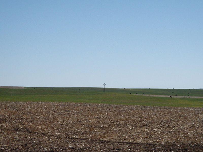 1600+ Acres Irrigated Farm Land : Texline : Dallam County : Texas