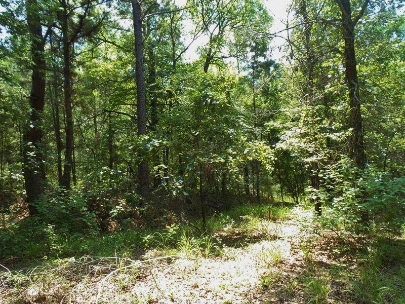 Cold Spring Creek Tract 2 : Farris : Atoka County : Oklahoma