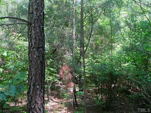 Developer's Dream Site (29+ Acres) : Pittsboro : Chatham County : North Carolina