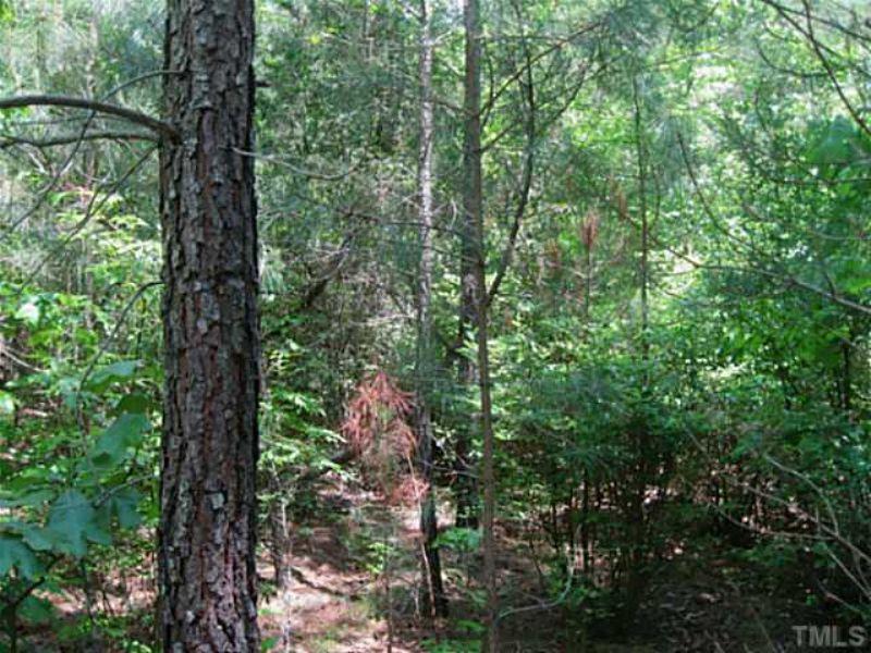 Developer's Dream Site (29+ Acres) : Pittsboro : Chatham County : North Carolina
