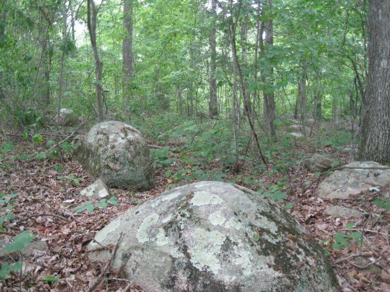 5.034 Acres Near Chapel Hill : Pittsboro : Chatham County : North Carolina