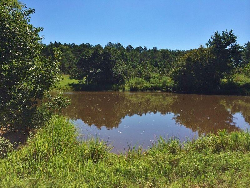 Cold Springs Road Homesite : Farris : Atoka County : Oklahoma