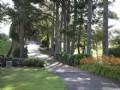 Beautiful Residence & Horse Facilit