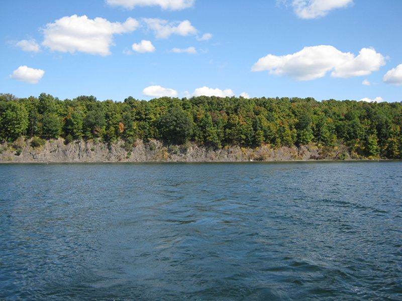 Waterfront Land On Owasco Lake : Niles : Cayuga County : New York