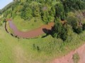 80 Ac- Excellent Hunting Property