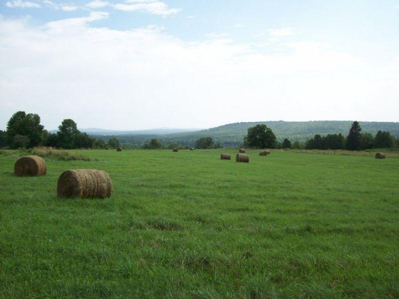 147 Acre Farm Parcel : Harmony : Somerset County : Maine