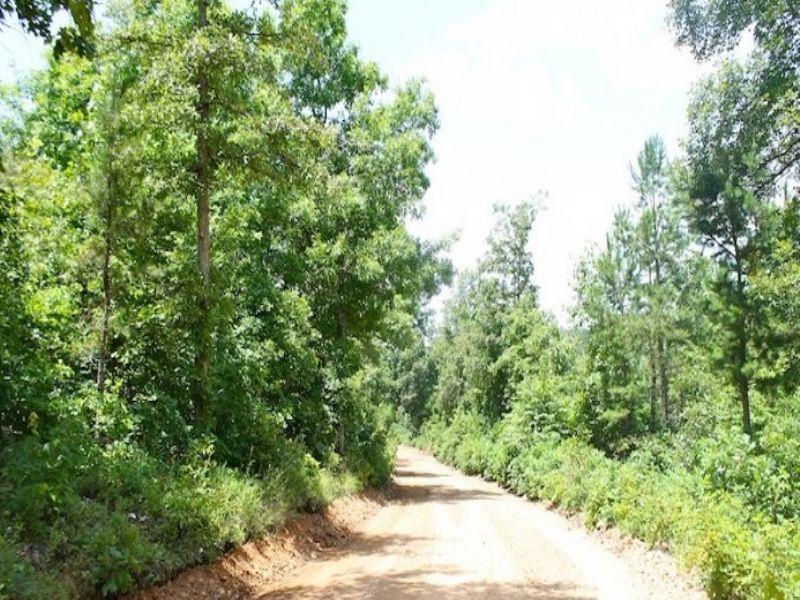 5.01 Acre Green Mountain Ranch : Winona : Shannon County : Missouri