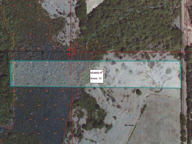 15 Ac Abundant In Deer & Turkey : Banks : Pike County : Alabama