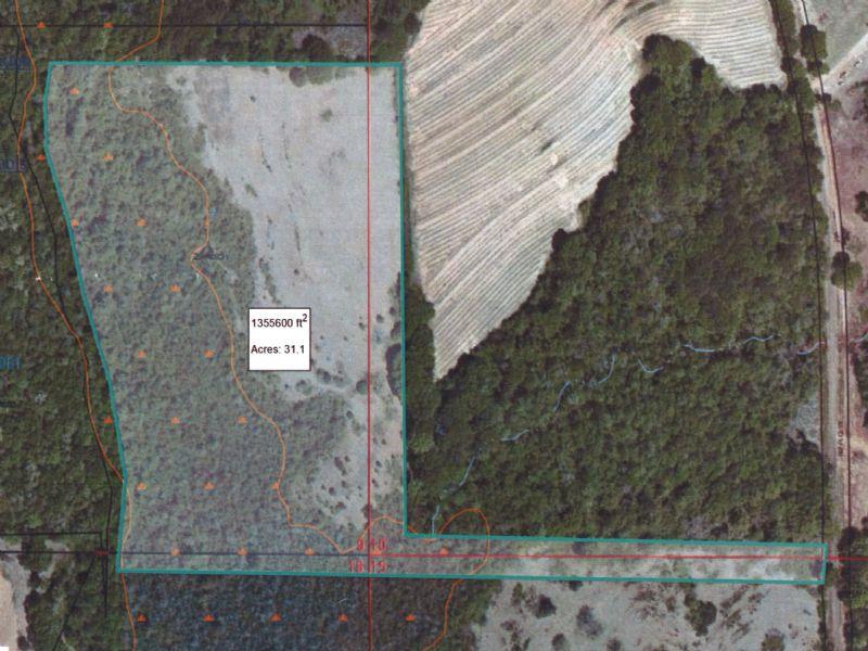 31 +/- Ac On Co Rd 5523 : Banks : Pike County : Alabama