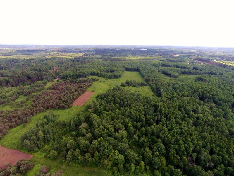 120 Acres Off Hwy 51 : Cassian : Oneida County : Wisconsin
