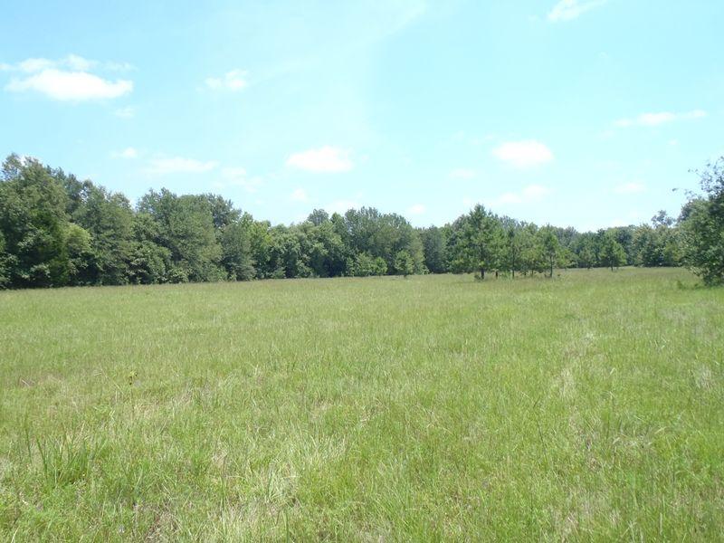 Cold Springs Creek 120 : Farris : Atoka County : Oklahoma