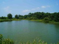 216 Acres Of Fishing Land