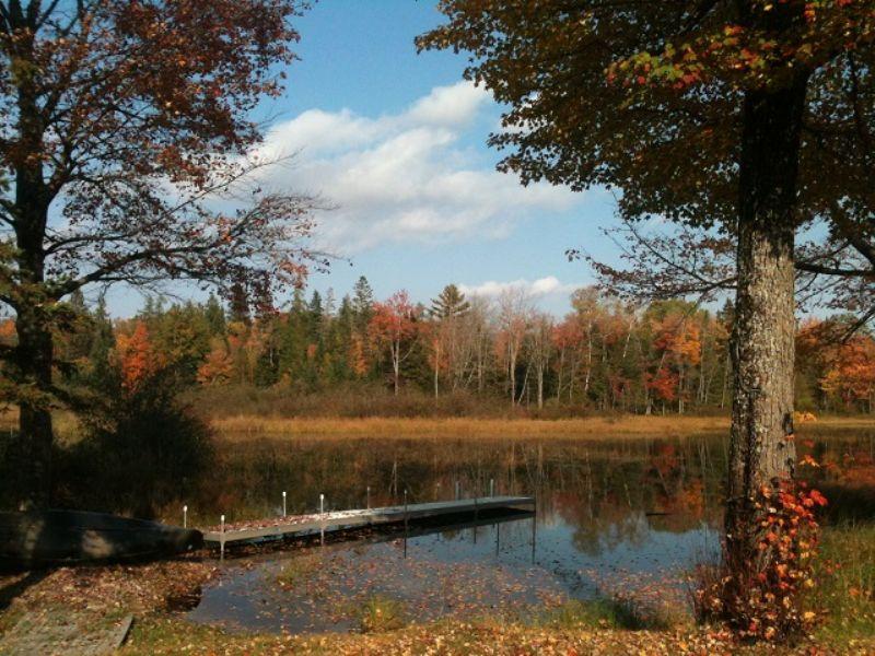 Maine Cabin On Hobbs Brook : Milo : Piscataquis County : Maine