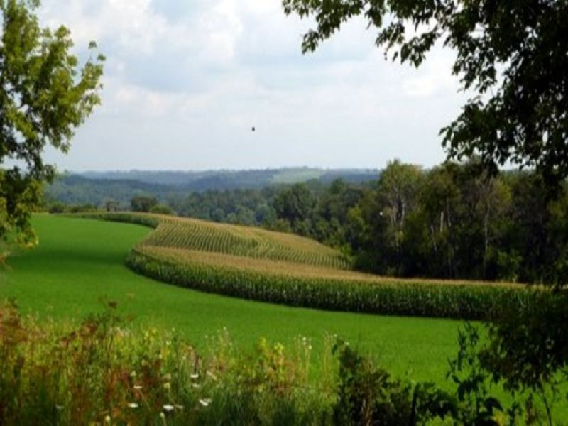 Beautiful 88 Acres W Large Valley : Mount Horeb : Dane County : Wisconsin