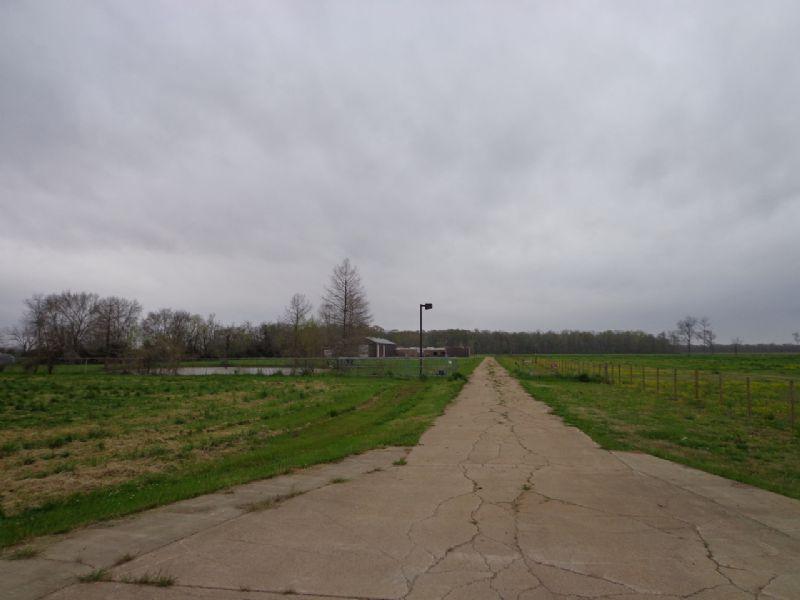 20+/- Acres For Sale Bunkie, La : Bunkie : Avoyelles Parish : Louisiana
