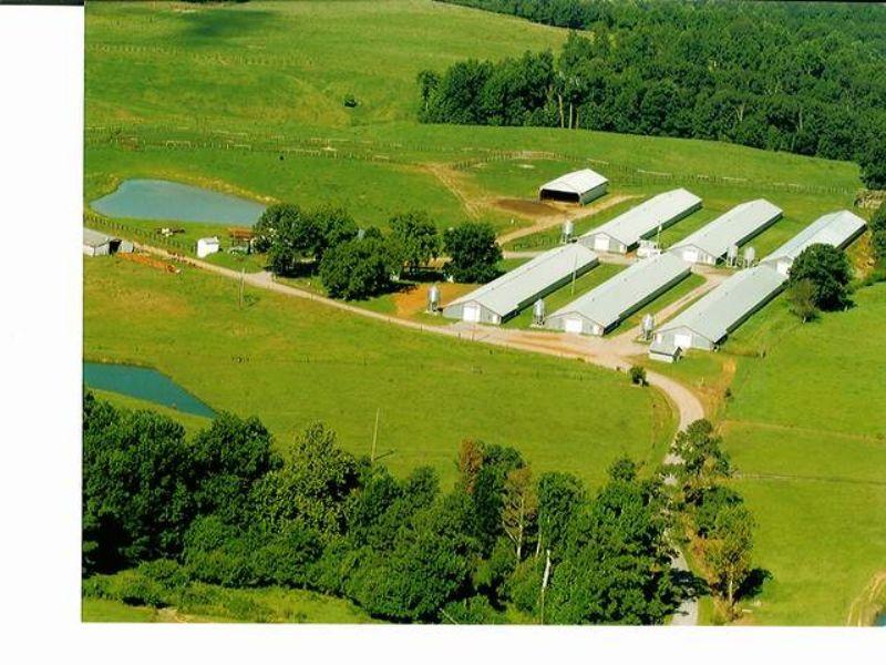 6 House Poultry Farm : Vinemont : Cullman County : Alabama