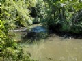 164+/- Acres With Creek & Cabin
