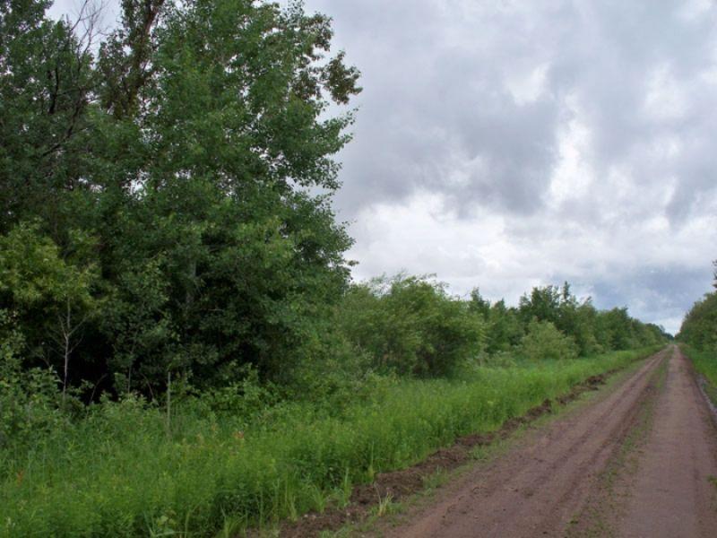 20 Acres. Terms $150/month : Waskish : Koochiching County : Minnesota