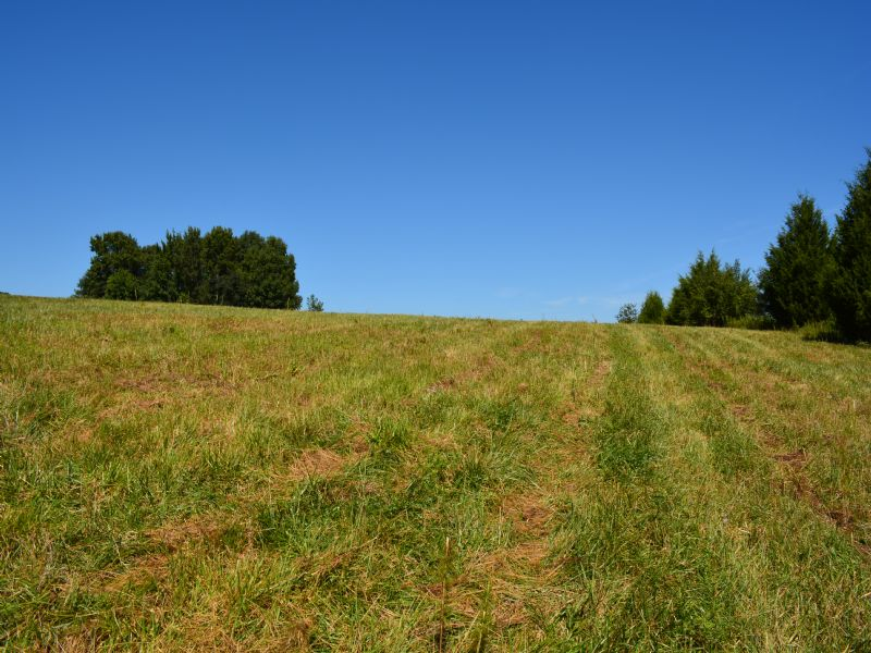 10+ Acres Already Cleared : Siler City : Chatham County : North Carolina