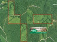 340 Acres Timber Land