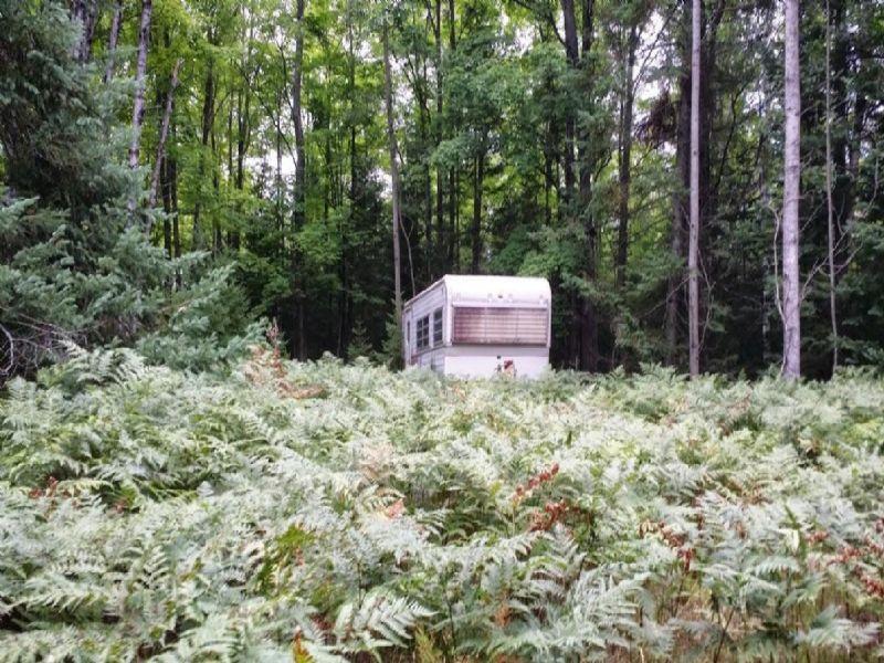 Hunting Property On Lake : Atlanta : Montmorency County : Michigan