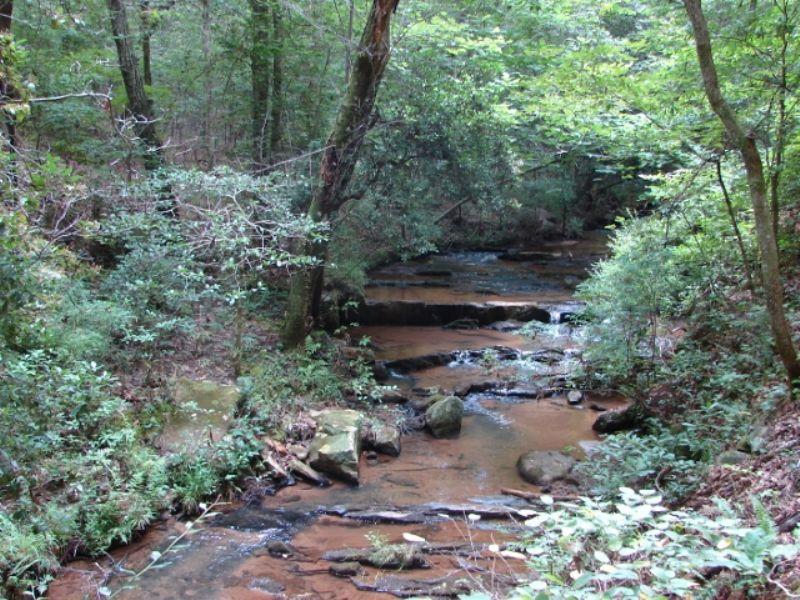Waterfalls, Woods And Wildlife : Rockford : Coosa County : Alabama