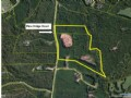 50 Ac. Rec Tract With Timber