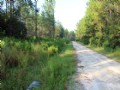 21.75 Acres Minutes To Keys & Gulf