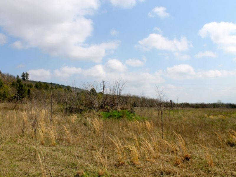 5.1 Acre Daisy Meadows : McAlester : Pittsburg County : Oklahoma