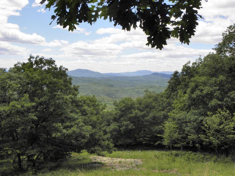 Merrill Mountain Forest : Hiram : Oxford County : Maine