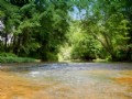 73 Acres With Piney River Frontage