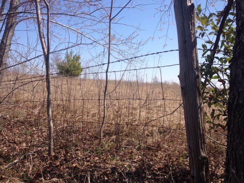Lowest Price /acre : Gaston : Lexington County : South Carolina
