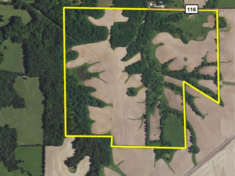 159 Acres Monroe County : Holliday : Monroe County : Missouri