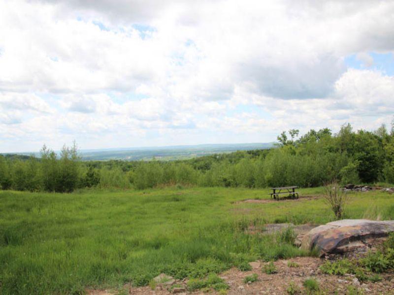 204 +/- Acres Land, Pole Building F : Dushore : Sullivan County : Pennsylvania