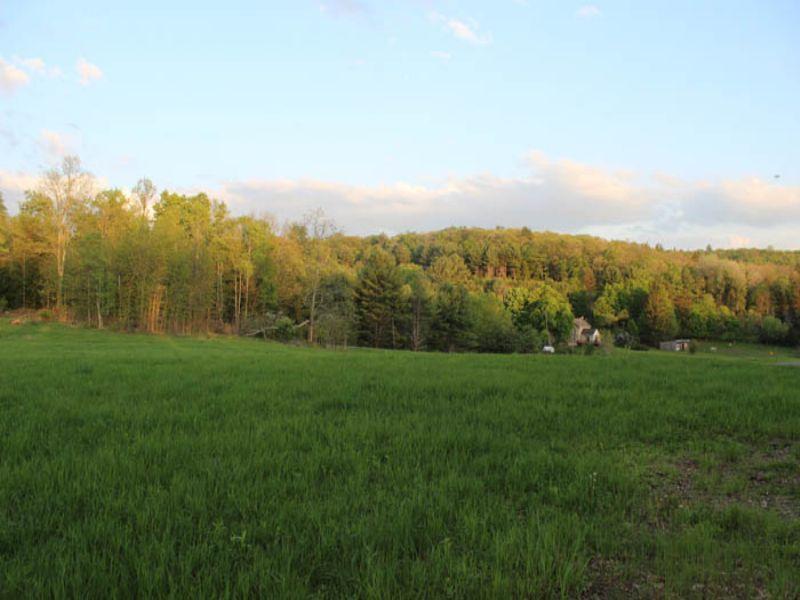 11.6 Acre Parcel Of Land : Benton : Columbia County : Pennsylvania