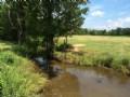 Foreclosed 42 Acres - Three Ponds
