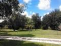 Beautiful 10 Acres Spring Lake