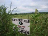 70 Acres Of Agriculture Land