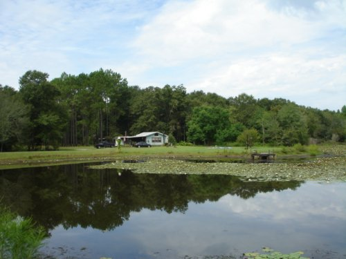 107 Acres : Moultrie : Colquitt County : Georgia