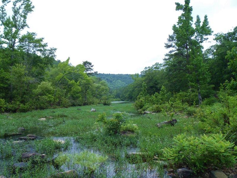 Black Fork Creek Tract 1 : Nashoba : Pushmataha County : Oklahoma