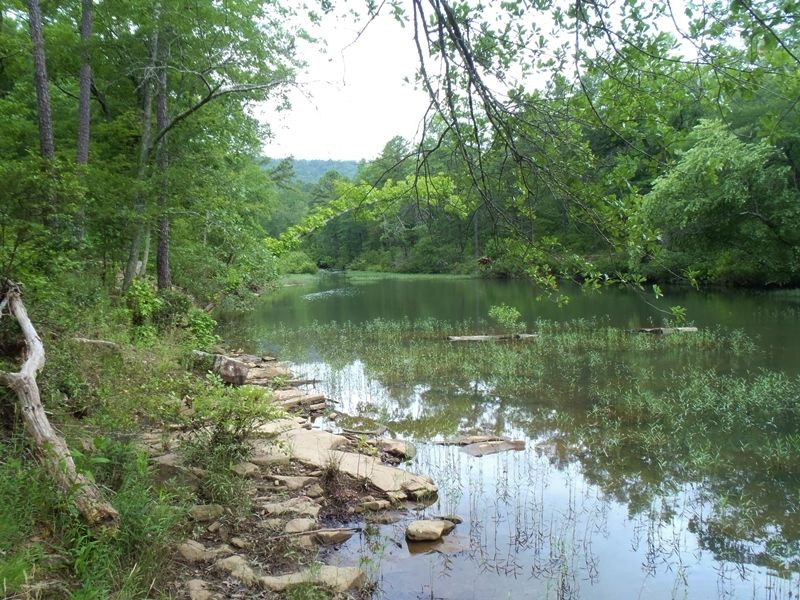 Black Fork Creek Tract 2 : Nashoba : Pushmataha County : Oklahoma