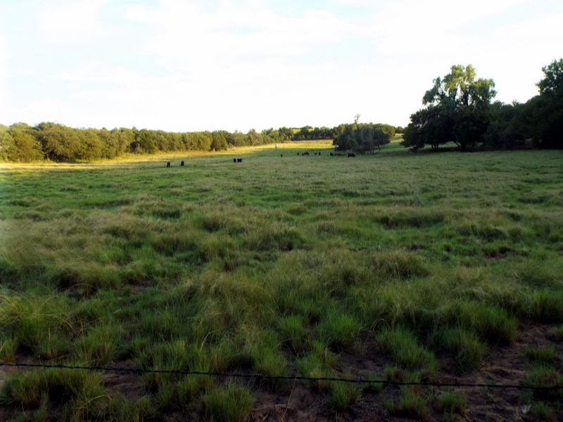 102±  Acres Prime Hunting Land : Minco : Caddo County : Oklahoma