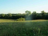 280 Acres Of Agriculture Land