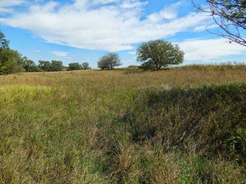 Sasnak 140 : McPherson County : Kansas