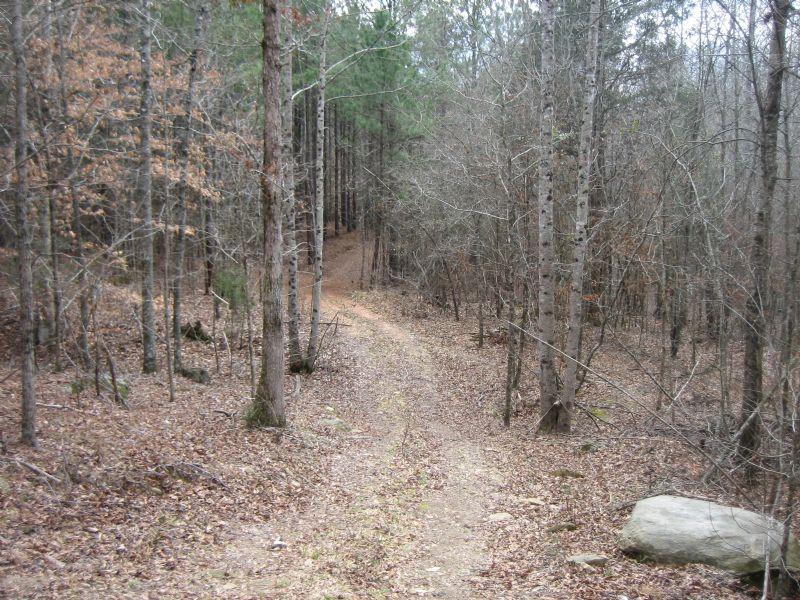 Hunting Lease : Elberton : Elbert County : Georgia