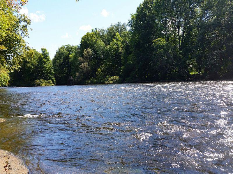 Land Near Salmon River : Pulaski : Oswego County : New York
