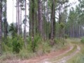 20.98 Acres Land For Sale