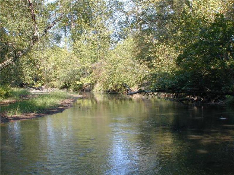 419 Acres With Long River Frontage : Chatham : Pittsylvania County : Virginia
