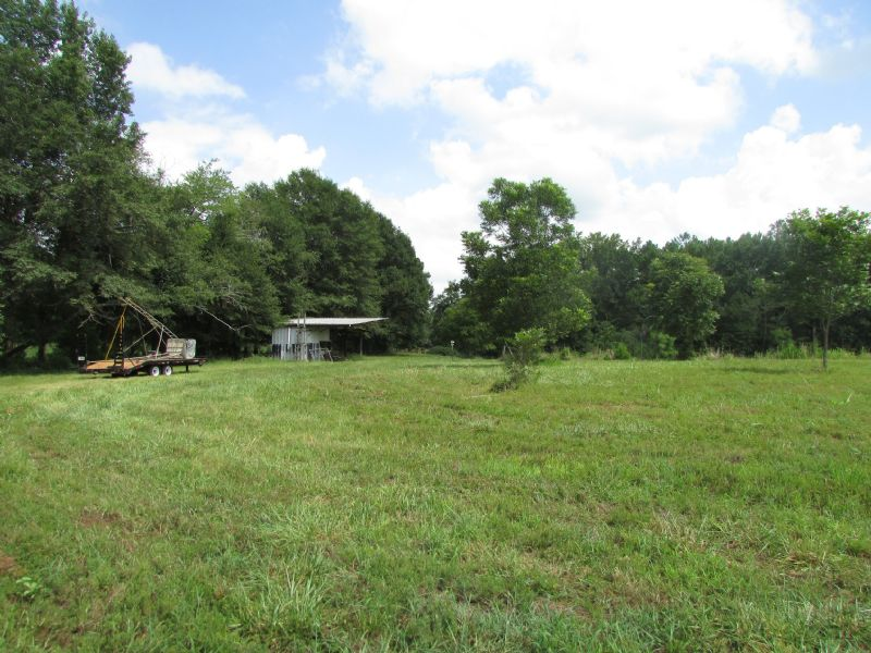 Online Only Auction 69.96 Acres : Winterville : Clarke County : Georgia
