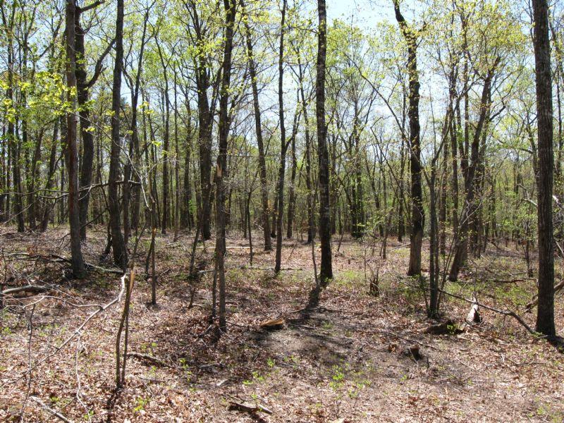 21.7 Acres Terrapin Creek Rd : Bedford : Bedford County : Virginia
